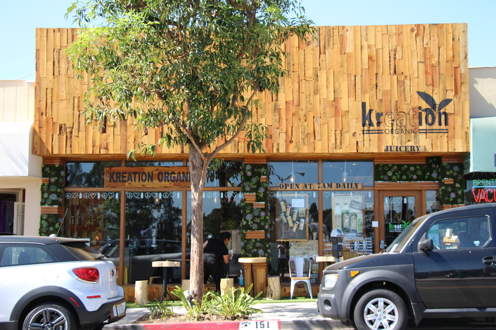 Main Storefront Picture - Nature Theme Storefront Design