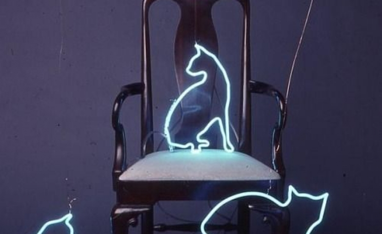 Another creative way of using neon sign, in this one they made cat shapes to go with the furniture.