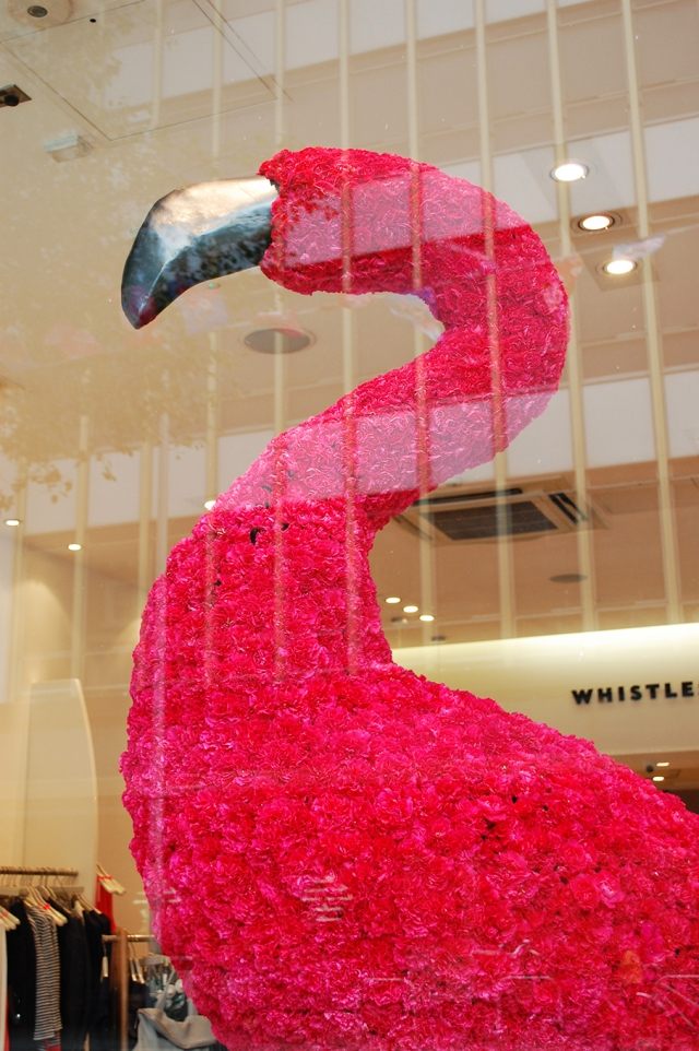 Whistles pink carnation flamingo spring window display