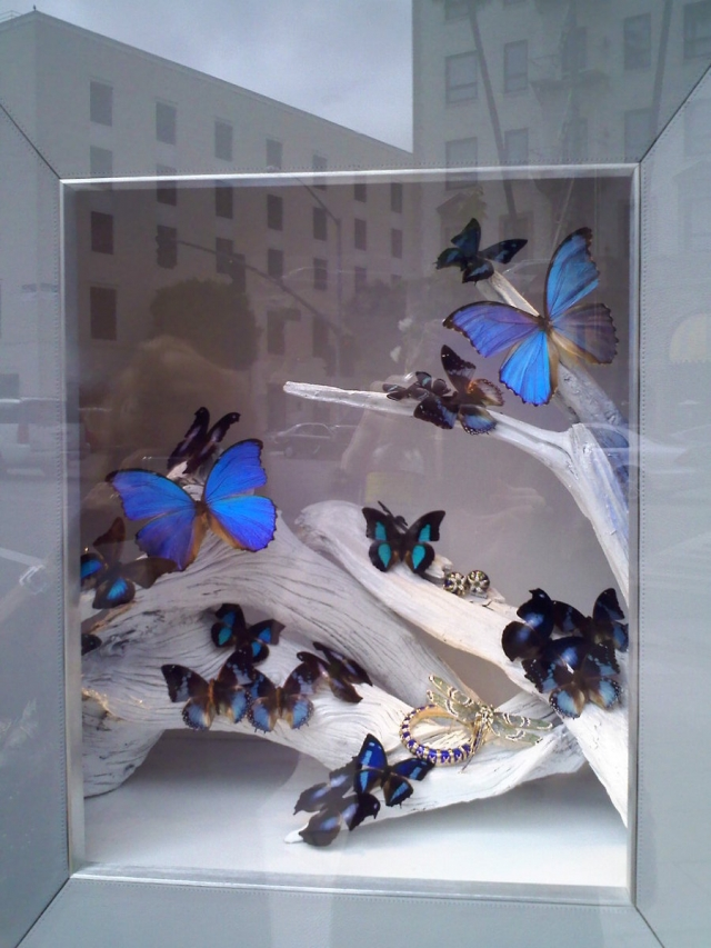 This window display with royal blue butterfly on white branches will surely attract the looks of many curious shoppers.