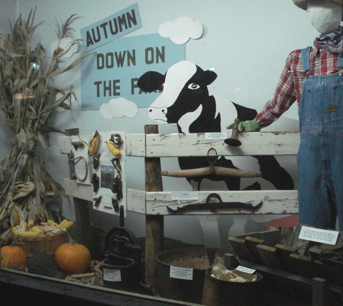 Autumn is down on the Farm in this window display and you can also observe pumpkins and faded plants.