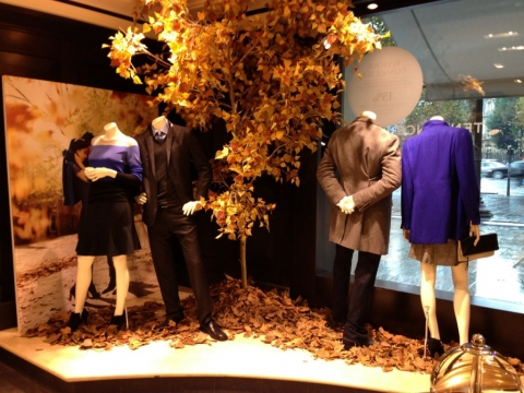 Banana Republic has a beautiful autumn window display with a tree full of yellow leaves.