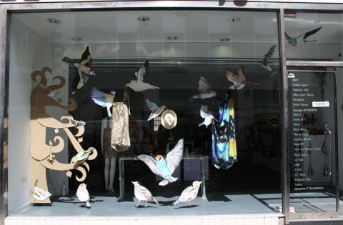 We can observe in this window display how everything can become easy in the summer through the illustrative birds.
