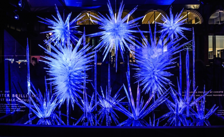 The blue light and the iced spines made a brilliant winter window display.