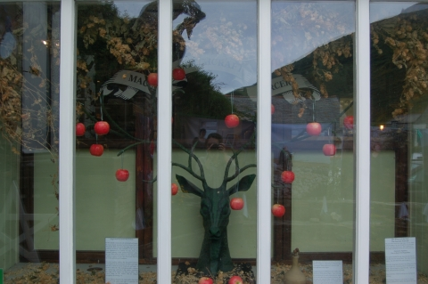 Fallen apples, the deer statue and the tree with those faded leaves purpose for this window display is to mark the autumn equinox.