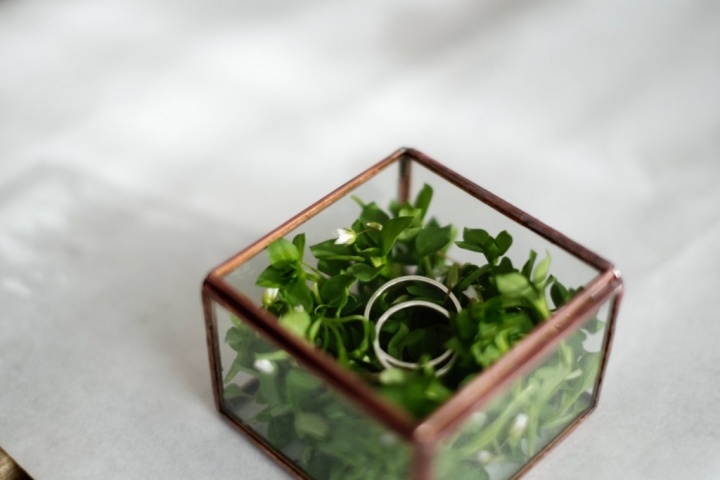 If you are a nature lover, you can choose a geometric ring box with little plants in it, as a creative jewelry holder.