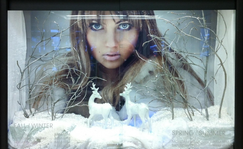 Reindeers for winter, snow on the ground, naked trees and mother nature in the background, all for this window display.