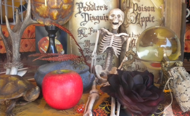 A few objects for a Halloween window display: a poisoned apple, a black flower, a skeleton and an old tortoise, probably already dead.