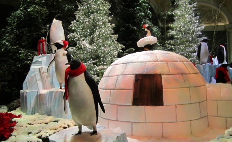 Penguins with red scarfs, igloos and adorned firs, build together a winter window display.