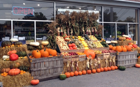 A tidy outside window display with different colors of pumpkins perfect for autumn sales.