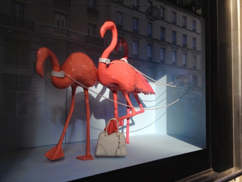 Say yes to these pink flamingos from this window display like you say yes to the pink martini you drink in the summer.