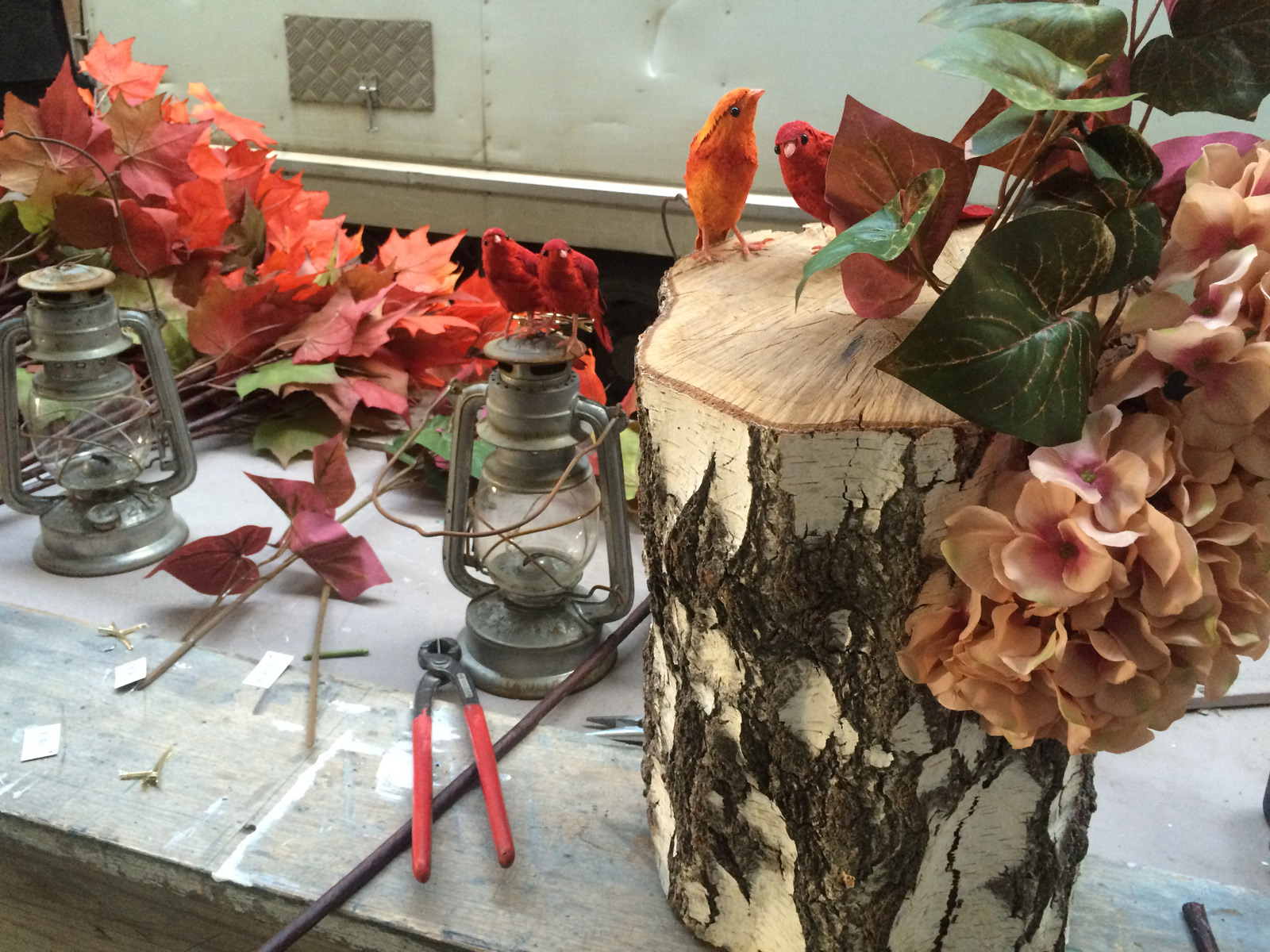 Eye-catching window display to promote the autumn season with a rustic timber, autumnal colored birds, and flowers.