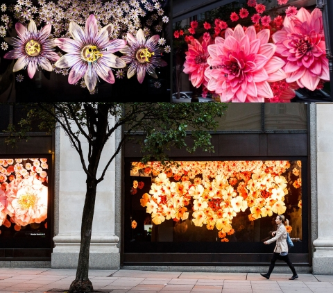 Selfridges has a stunning window display for autumn, with big colored flowers.