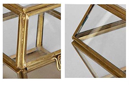 Vintage Clear Glass Brass Metal Frame Jewelry Display Case