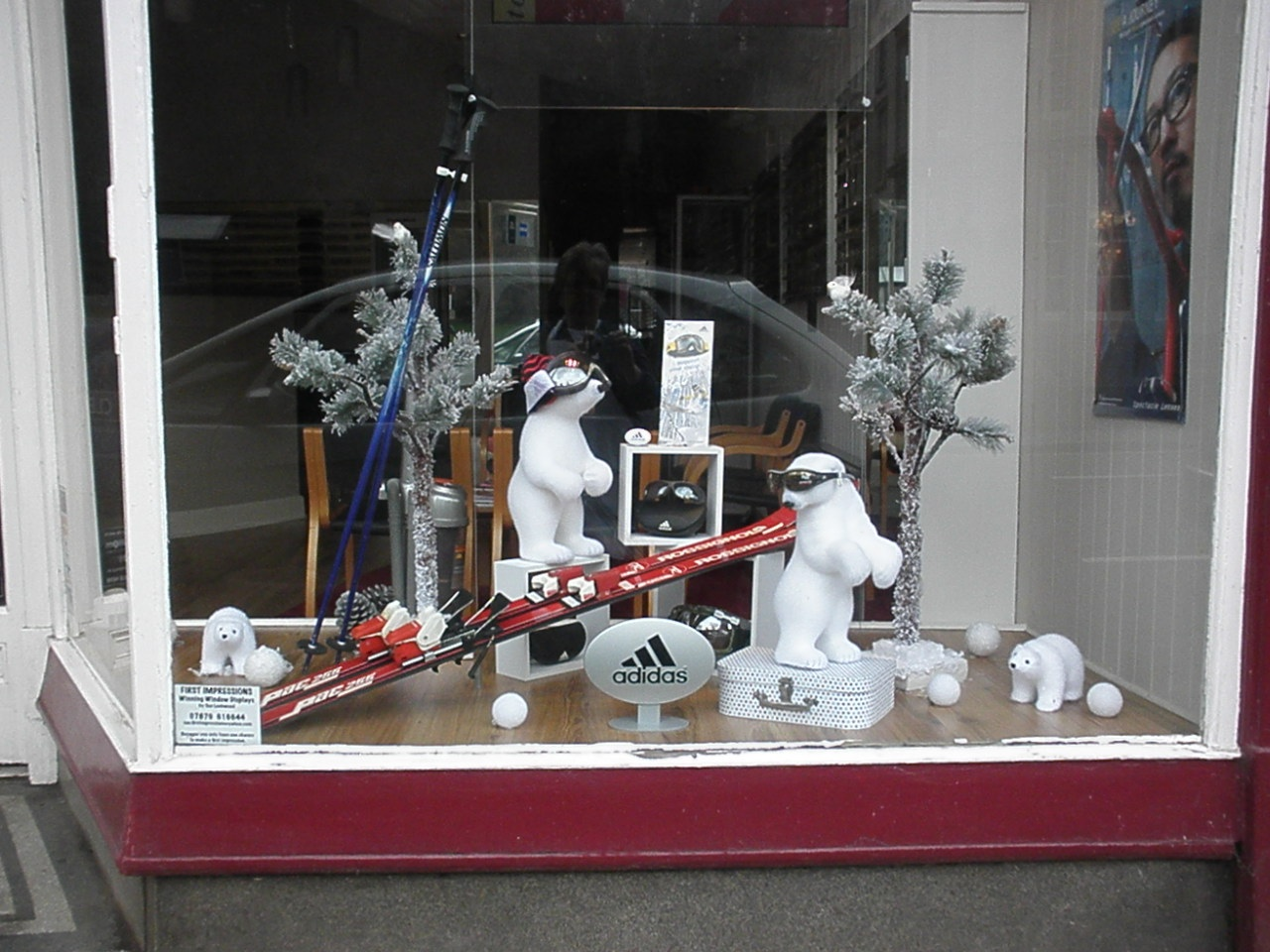 Two little polar bears are searching for the best snow in this window display because they want to ski in the New Year's Eve.