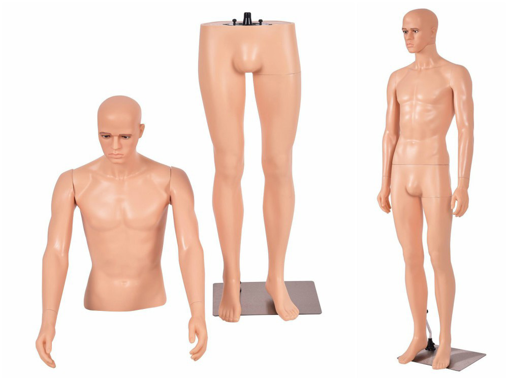 ZM-1904 - Charles - Semi-Realistic Male Plastic Mannequin